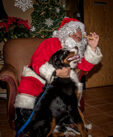 2015Santa and Pets at Reece-18