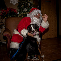 2015Santa and Pets at Reece-17